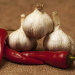 Garlic and chilli — Stock Photo