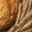 Bread and wheat on canvas — Foto Stock