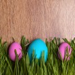 Colored eggs. Easter. April. Holiday. tradition — Stock Photo #40207661