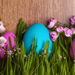 Colored eggs. Easter. April. Holiday. — Stock Photo