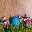 Colored eggs. Easter. April. — Stock Photo