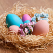 Easter eggs on nace — Stock Photo #40207739