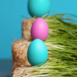 Colored eggs. concept — Stock Photo