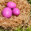 Easter eggs on nace — Stock Photo #40207797
