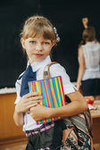 School girl. classroom — Stock Photo
