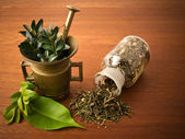 Mortar and pharmacy bottle, with herbs — Stock Photo