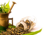 Pestle, herbs and pharmacy bottle. — Stock Photo