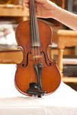 Violin, fiddle — Stock Photo