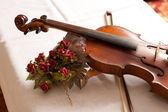 Violin, fiddle — ストック写真
