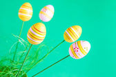 Easter eggs on green background — Stock Photo