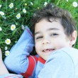 Stock Photo: Smiling boy lying on grass