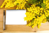 Notepad and mimosa — Stock Photo