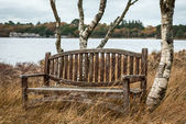 Bench near the lake — Stock Photo