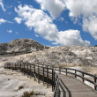 Mammoth Walkway — Stock Photo