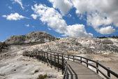 Mammoth Walkway — Stock Photo