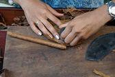 Turn cigars - Cigars turner at work -2 — Stock Photo