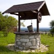 Water well — Stock Photo #19756329