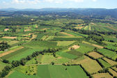 Fields panorama — Stock Photo