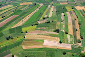 Fields from aeroplane — Stock Photo