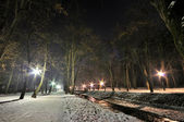 Winter night promenade — Stock Photo