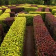 Garden labyrinth - Stock Photo