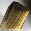 Hardback book opened vertically — Stock Photo #26427769