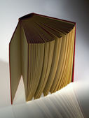Hardback book opened vertically — Stock Photo