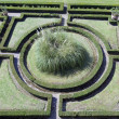 Geometric  ornamental garden wiew from above — Stock Photo