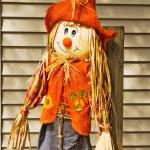 Adorable scarecrow — Stock Photo #24356795