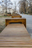 Empty wooden benches in the park — Stock Photo