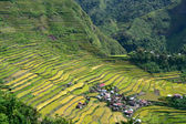 Rice terraces in Batad — Stock Photo