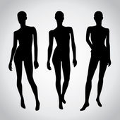 Set of Isolated Female Mannequins — Stock Vector