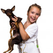 Beauty children girl with dog puppy mini toy terrier — Stock Photo #28367673