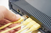 Connect the cable to the network switch — Stock Photo
