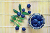 Spilled blueberry — Stockfoto