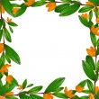 Green leaves and flowers frame — Stock Photo