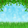 Grass, bubbles and leaves - Stock Photo