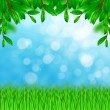 Green leaves and grass on the sky background — Stock Photo