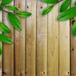 Green leaves on the wooden planks texture — Stock Photo
