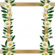 Wooden frame with leaves and daisies — Stock Photo