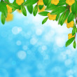 Green leaves and yellow flowers on the sky background — Stock Photo #26342939