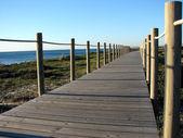 Dunes korumak için yaya köprüsü — Stok fotoğraf