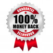 100 percent money back guarantee web button — ストックベクタ
