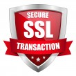 SSL Secure transaction button — Stock Vector