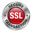 SSL transaction button — Stock Vector
