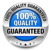 Velké tlačítko 100 % kvalita — Stock vektor