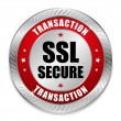 Stock Vector: Big red secure transaction button