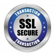 Stock Vector: Big blue secure transaction button
