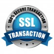 Blue SSL Secure transaction button — Stok Vektör #30868673