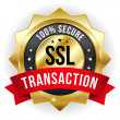 Secure transaction badge — Stok Vektör #32936803